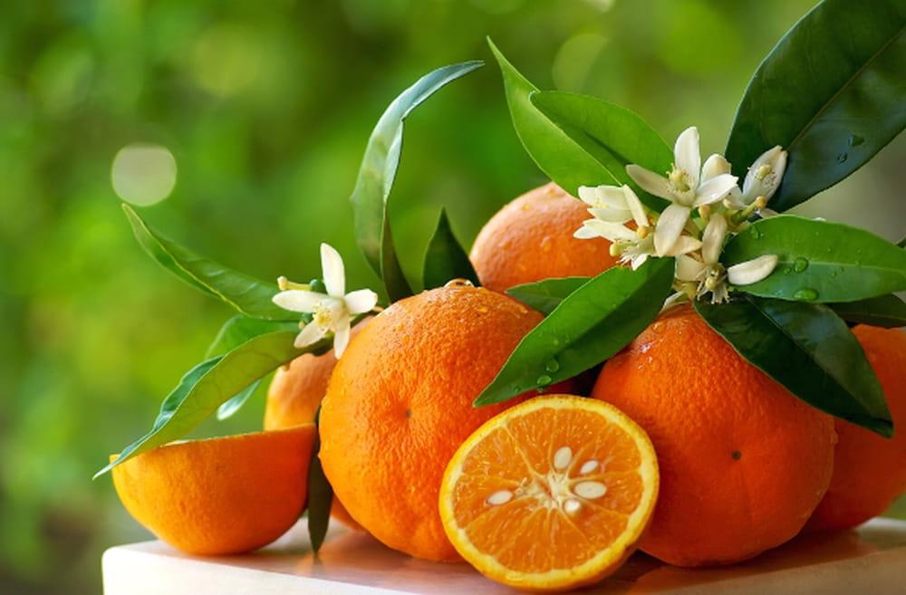 فوائد صحية للبرتقال