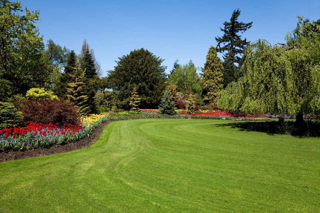 Consigli per seminare il prato - Quando seminare erba giardino ...