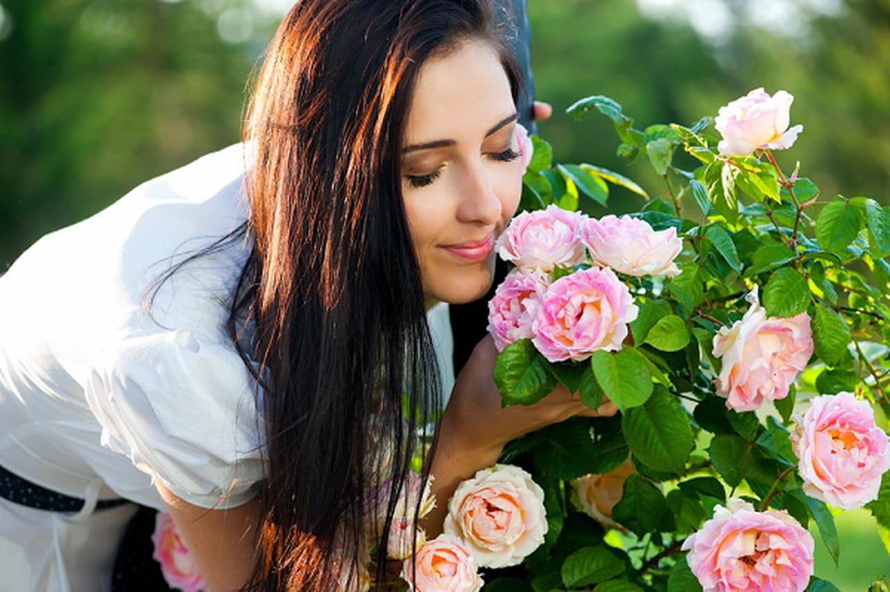 Image result for صور الرائحة الجميلة