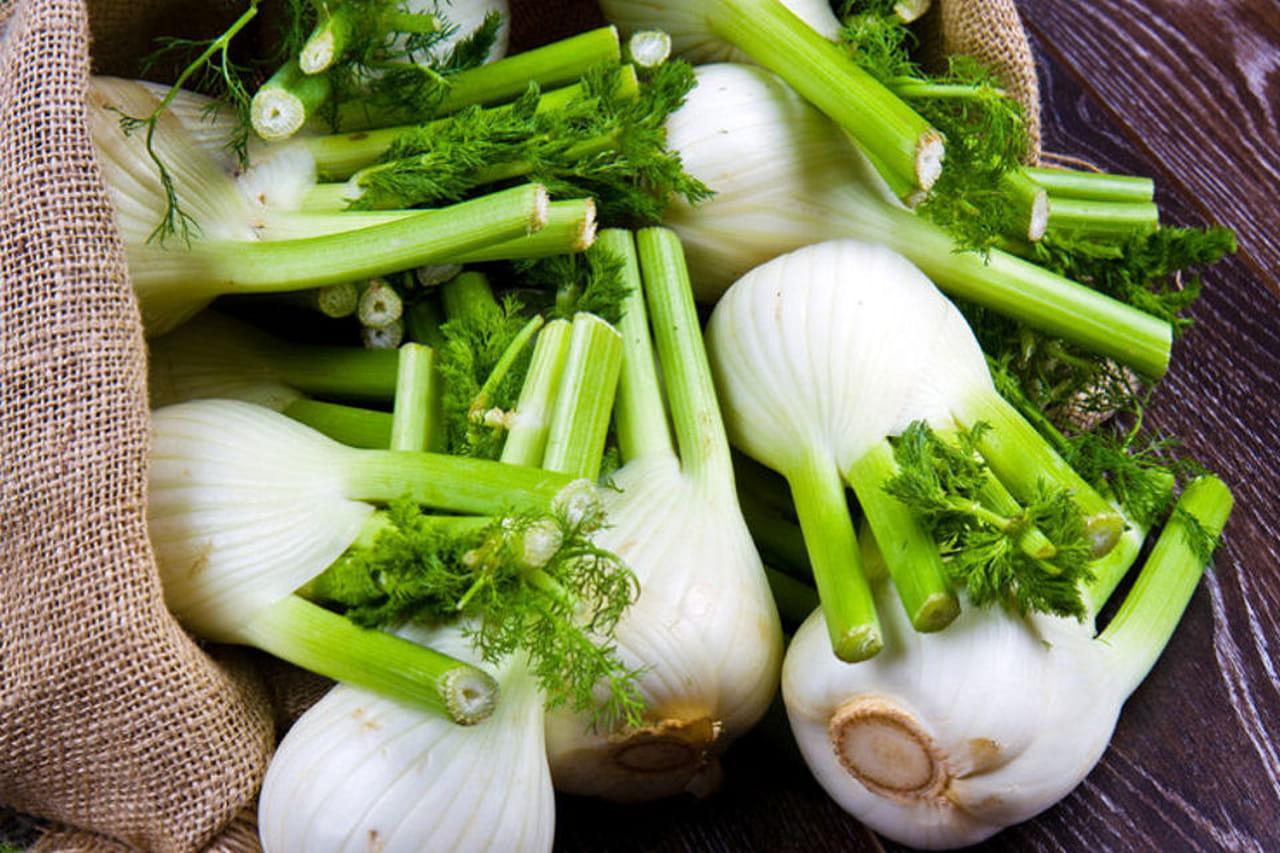 Come cucinare i finocchi ricette originali e saporite for Cucinare qualcosa di particolare