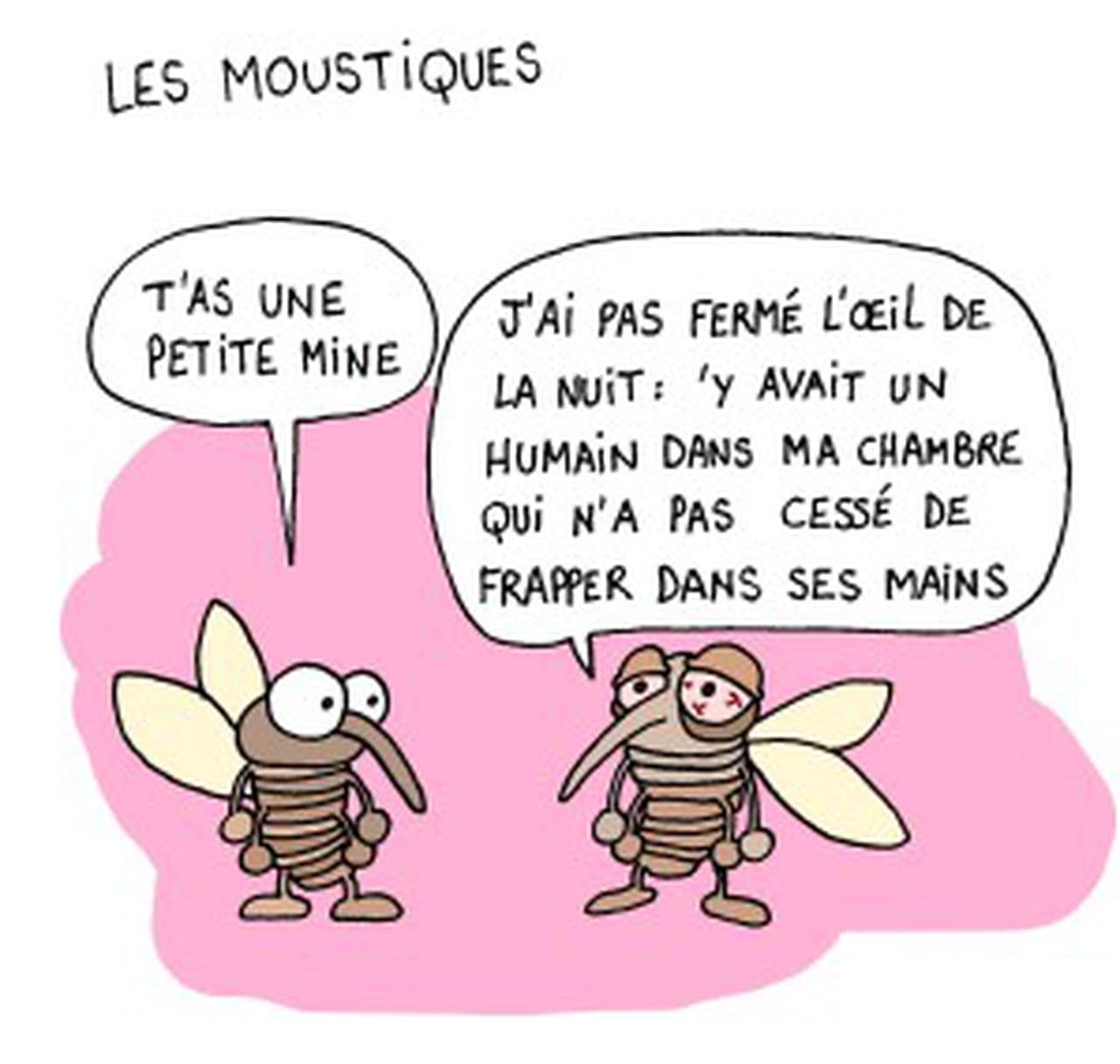 Loigner les moustiques cheap lire aussi with loigner les moustiques top fabriquer un pige - Que faire contre les mites ...