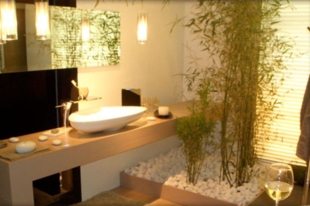 Plantas para banheiro saiba quais s o as esp cies ideais for Plantas para estanques pequenos