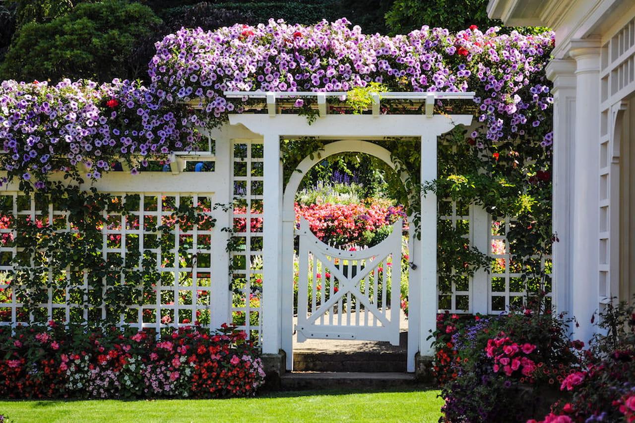 Recinzioni giardino recinti invisibili tailor made o - Recinzioni per giardini ...