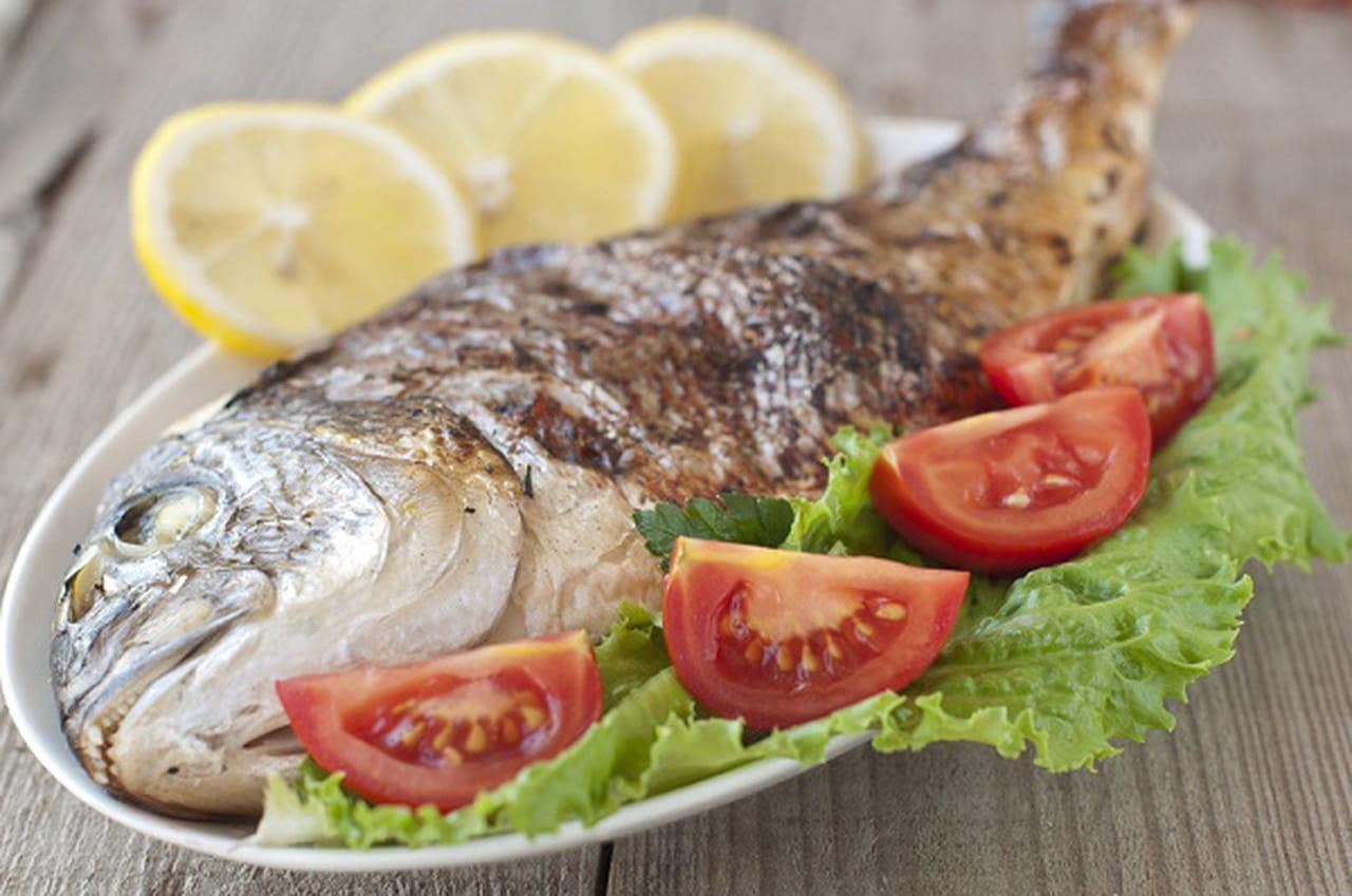 Image result for صور حامل تأكل المأكولات البحرية