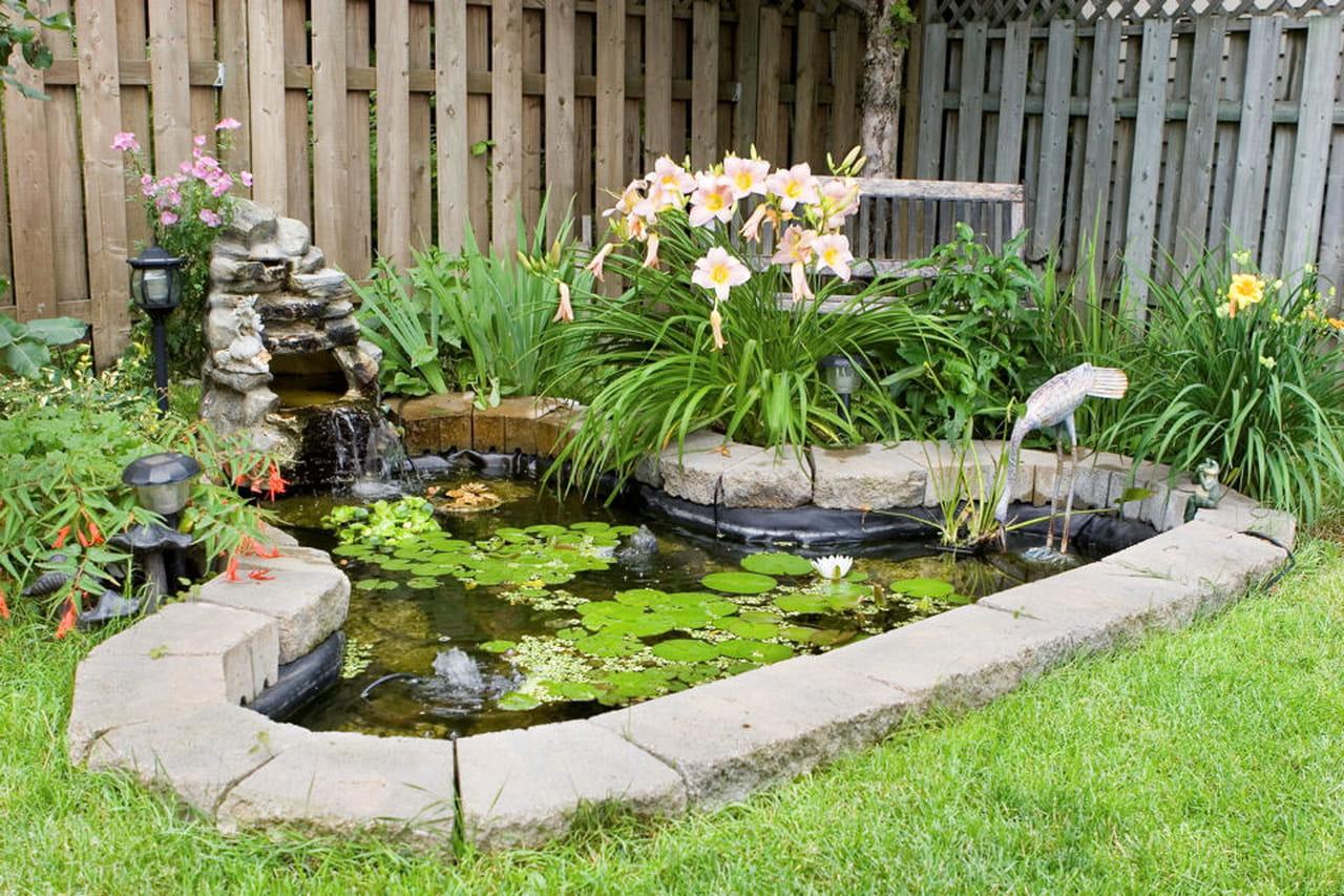 Giardino la manutenzione di un laghetto o di uno stagno - Laghetto per giardino ...