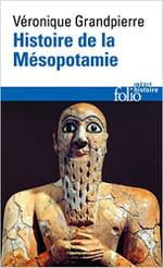 «Histoire de la Mésopotamie» de Véronique Grandpierre : un livre pour bousculer nos torpeurs et vaincre la surdité environnante