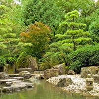 Giardino Piante Fiori Una Piscina Un Gazebo Un Orto