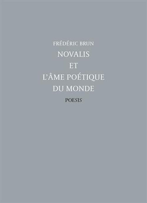 Novalis : une certaine idée de la poésie & du monde