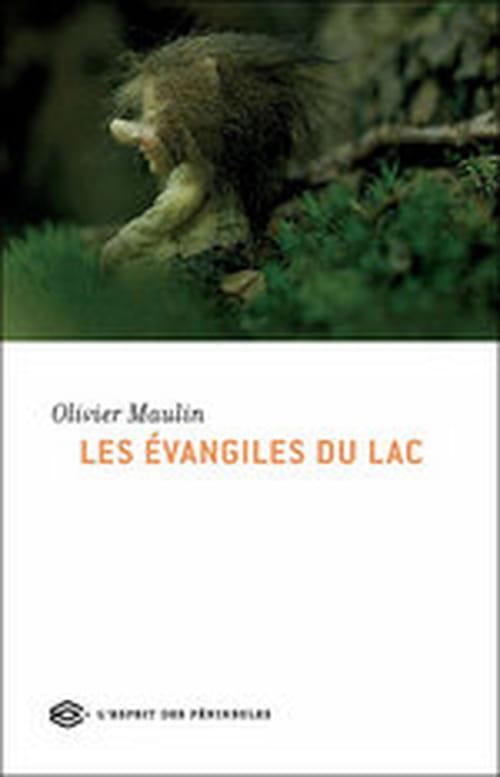 Les Évangiles du lac, Olivier Maulin propose une internationale des paumés en guerre contre le monde moderne