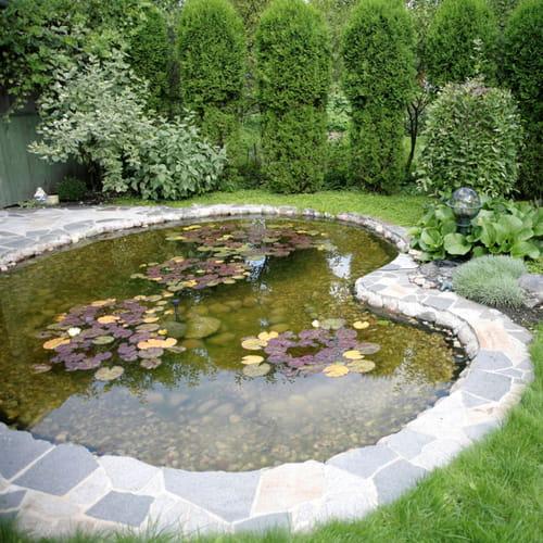 Laghetto da giardino come crearlo for Vasca per stagno