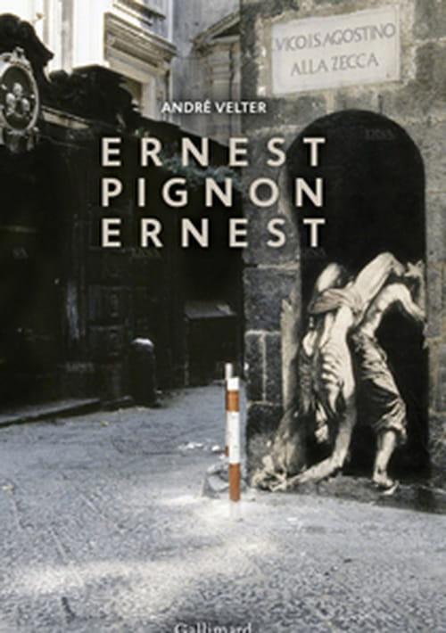 Ernest Pignon-Ernest ou la mémoire du monde, par André Velter