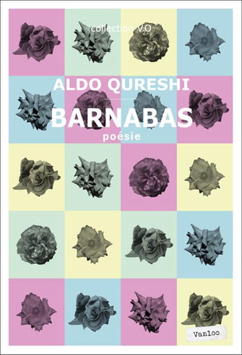 Aldo Qureshi : à rebrousse poils