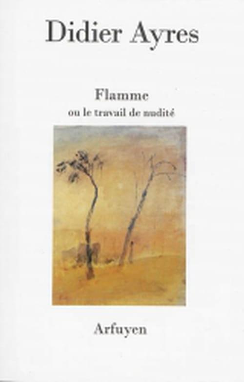 Didier Ayres, Un poète par le Feu