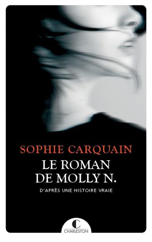 Le roman de Molly N. : En quête d'identité