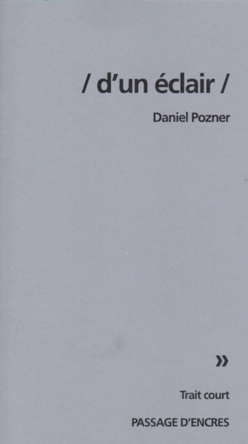 Variables d'ajustement de Daniel Pozner