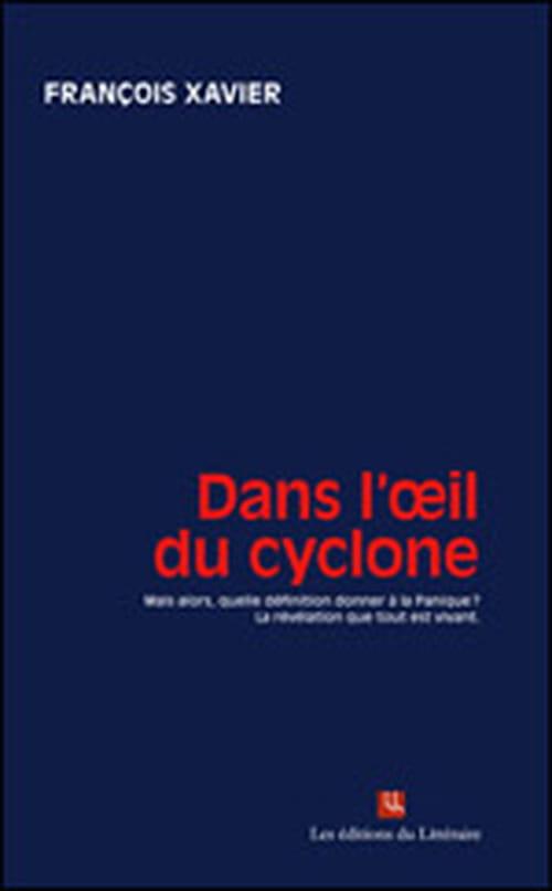 """""""Dans l'œil du cyclone"""" de François Xavier : le livre de l'été. Plus qu'une fable ce roman est un tourbillon d'émotions"""