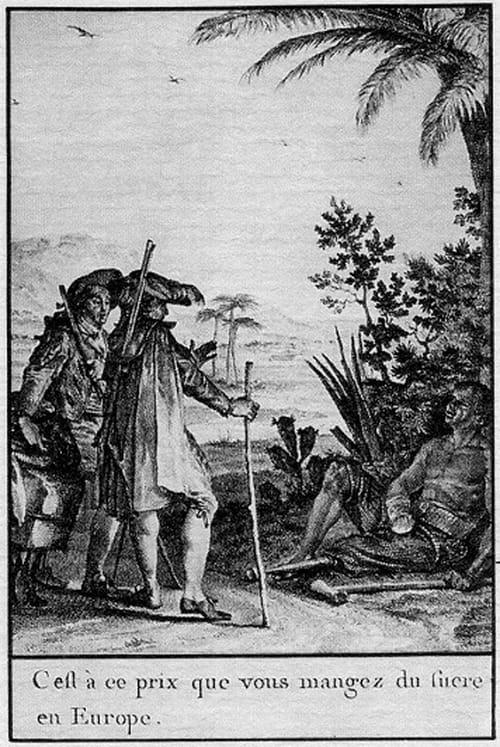 Candide ou l'Optimisme, de Voltaire : Résumé
