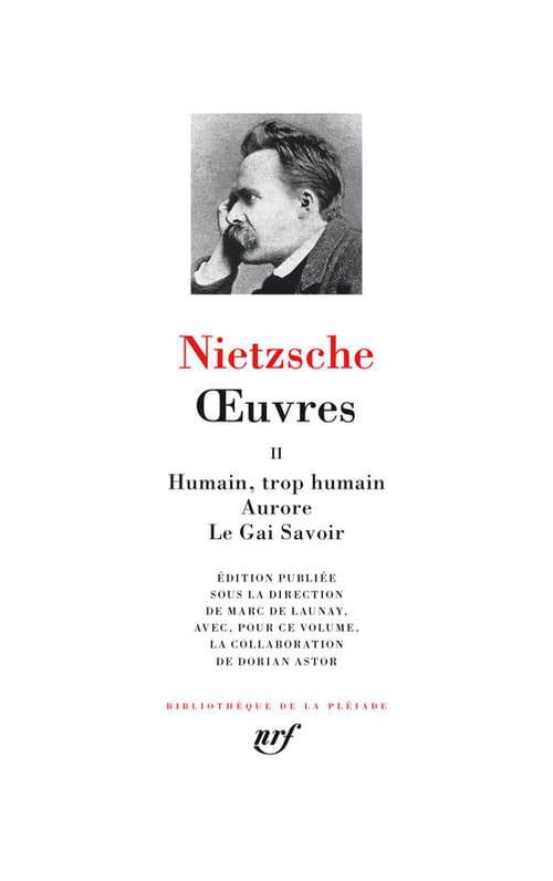 Lucide, trop lucide ce Nietzsche