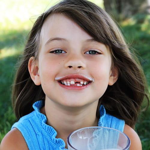 Denti da latte quanti sono e quali sono for Senatori quanti sono