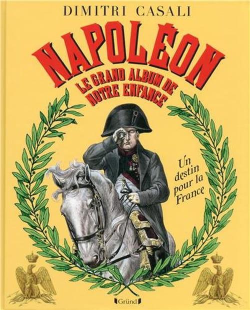 Napoléon, un destin pour la France