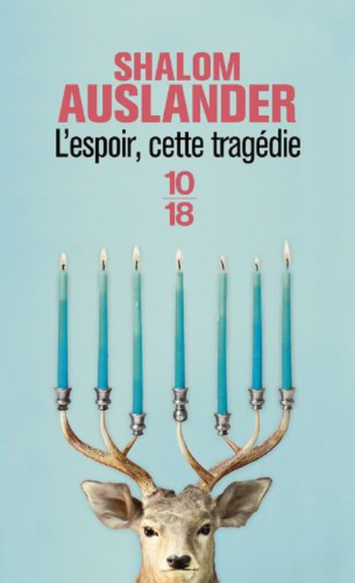 Shalom Auslander, L'espoir, cette tragédie: Une Anne Frank au plafond