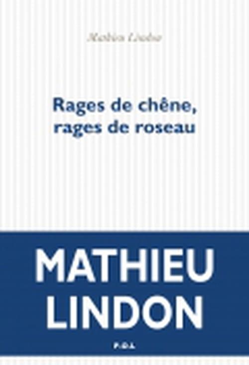 Le malentendu : Mathieu Lindon