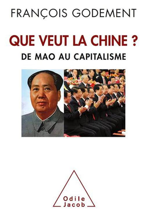 Que veut la Chine? De Mao au capitalisme «Le grand bond en terre inconnue »