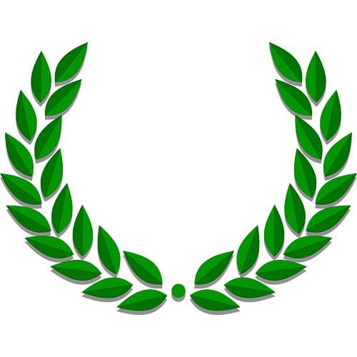 Actualité - Première sélection du prix Médicis 2012